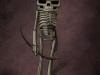 ILL_SkeletonB_004_061016_WG